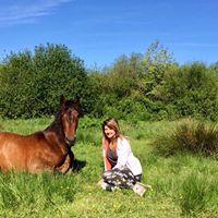 le-ranch-coco-barn-gite-etape-equestre